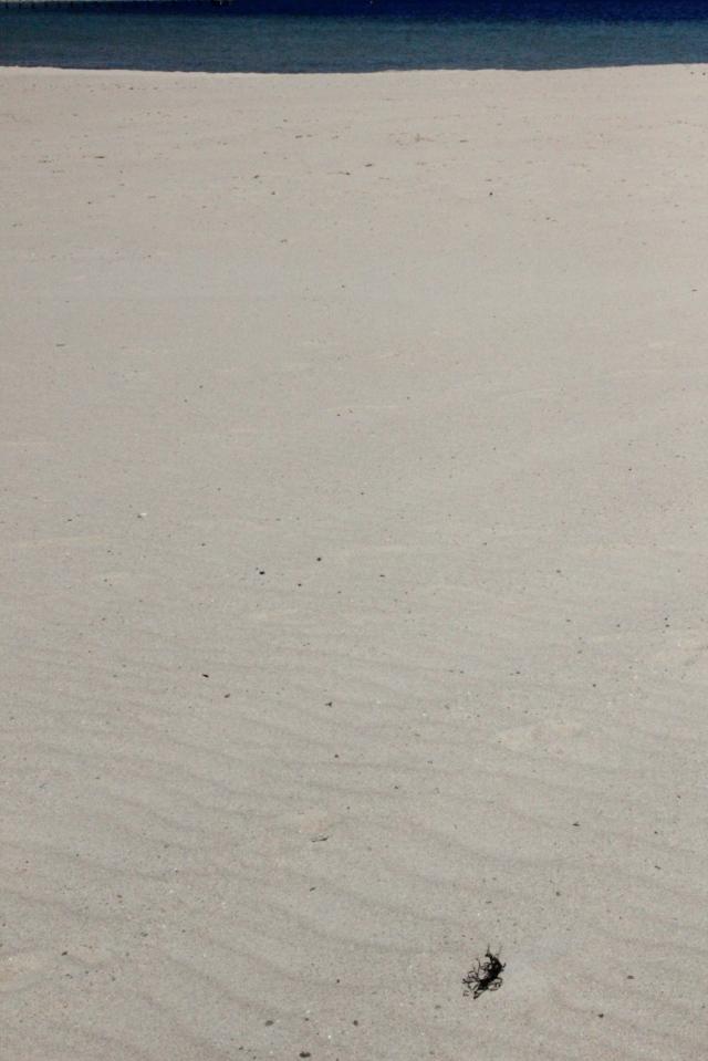 Weite Sandstrandfläche, im Hintergrund ein streifen dunkelblaues Meer.
