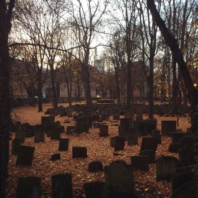 The_Old_Jewish_Cemetary_as_seen_from_the_day_care_center_in_November__12von12